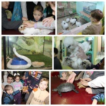 детский эколого-биологический центр