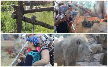 Жаркая экскурсия в Казанском зооботсаде